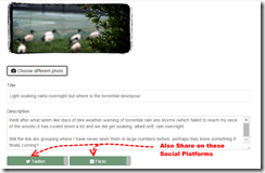 Publish to your own site first. Then share to social media if you want