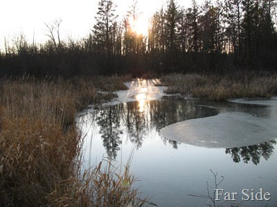 Ice on the river at Dead Beaver area