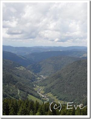 Juni 2011 Schwarzwald 053