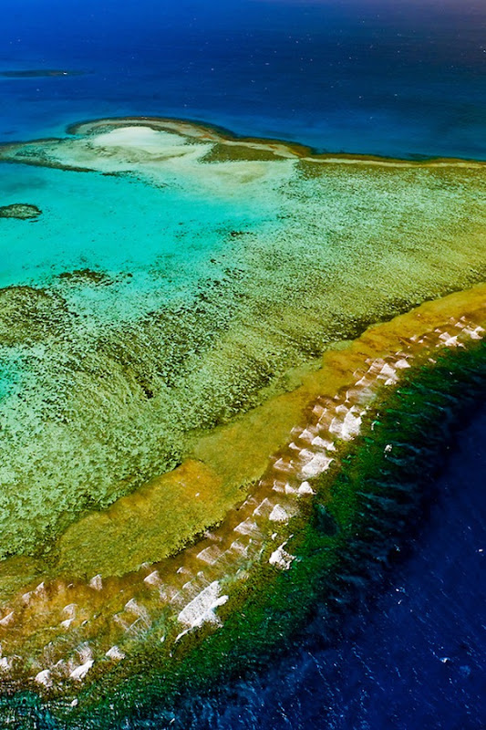 New Caledonia Barrier Reef 01