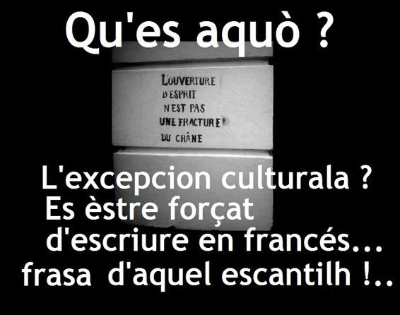 excepcion culturala 2
