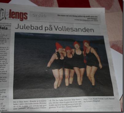 Vikebladet 030112 001
