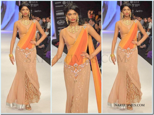 Jashn_IIJW_Saree (11)