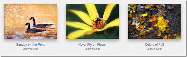 FAA-HoverFly