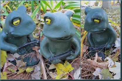 frog gardeners