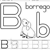 borrego.jpg