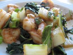 Spicy Shrim & Bok Choy