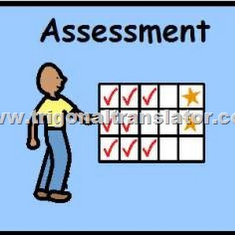 Translation Assessment Criteria