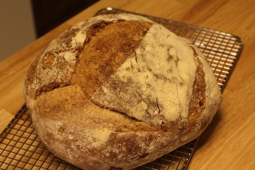 crusty-no-knead-bread023