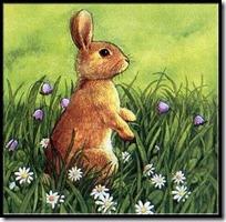 conejos pascua (31)