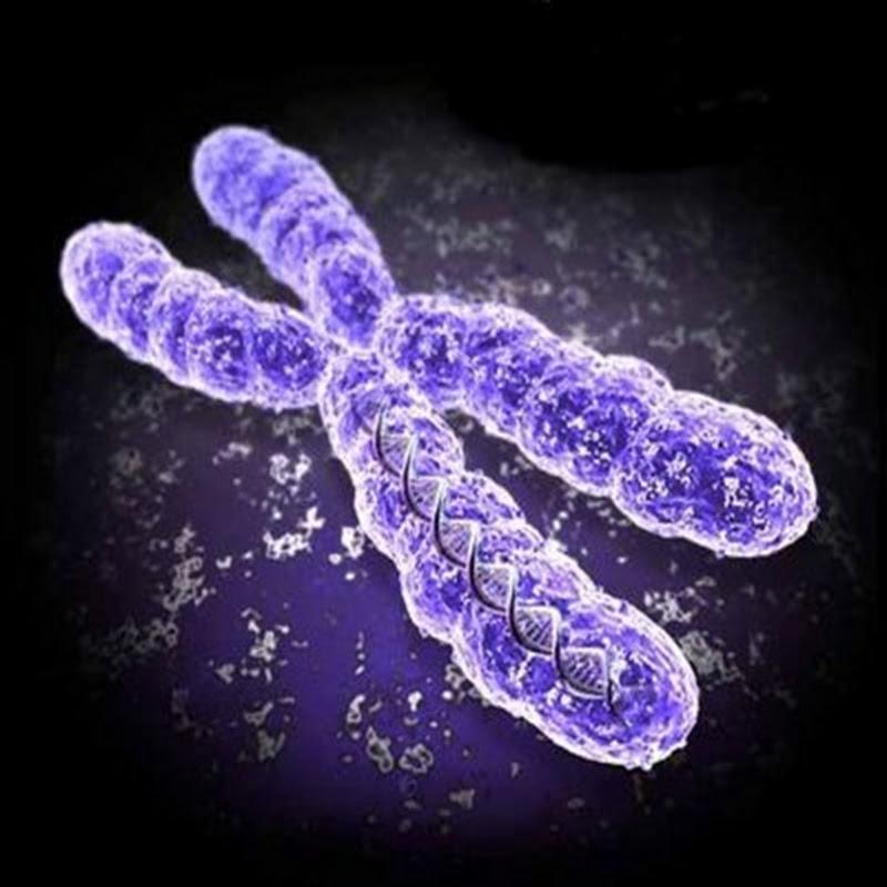 Celulas de combustible biológico que crean electricidad a partir de fluidos corporales