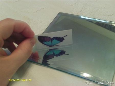 butterfly in a mirror