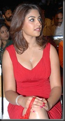 richa-gangopadhyay_very hot