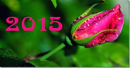 FELIZ 2015 (62)