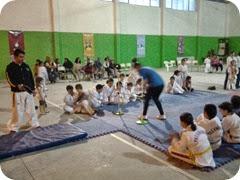 Taekwondo Olímpico