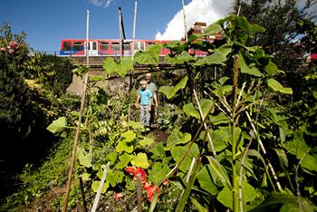 Community-Gardening.aspx