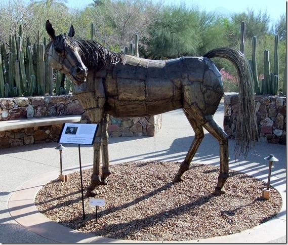 horse 1 3-26-2011 8-49-39 AM 3616x2712