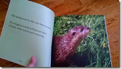from Otter Passover, by Jennifer Tzivia MacLeod