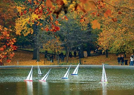 sailboats-fall-l