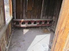 SpringsPreserveTrails-8-2012-02-28-10-34.jpg