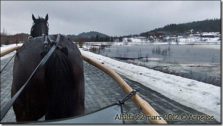 2012-22mars-alf_01