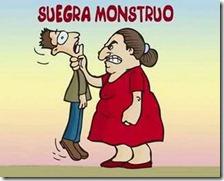 humor suegras (8)