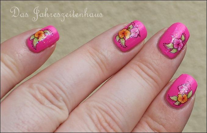 Pinker Hibiskus 6
