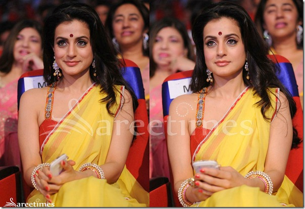 Amisha_Patel_Sleeveless_Saree_Blouse