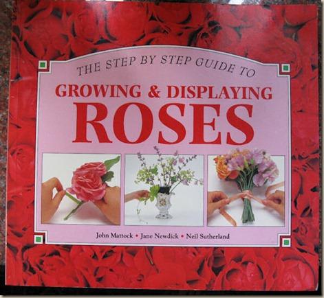 07-10-rose-bk