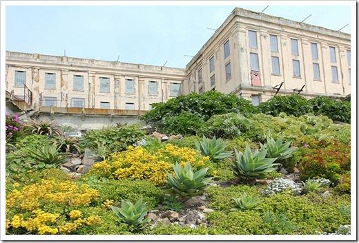 120408_Alcatraz_273