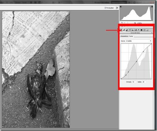 Imagen 5 curva de tonosflecharecortado