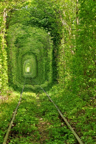 tunnel-of-love-13