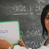 Algérie : L'enseignement de Tamazight en régression dans plusieurs wilayas