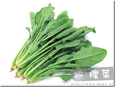 14 - 菠菜 - Bo Choi - Spinach