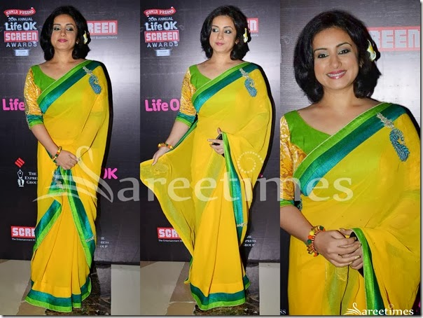 Tisca_Chopra_Yellow_Georgette_Saree