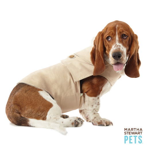 Every dog needs a trench coat...(petsmart.com)