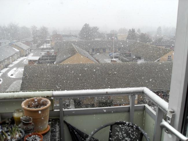 Det er svært at tage billeder af snevejr, så det ses hvor meget og voldsomt det vælter ned..