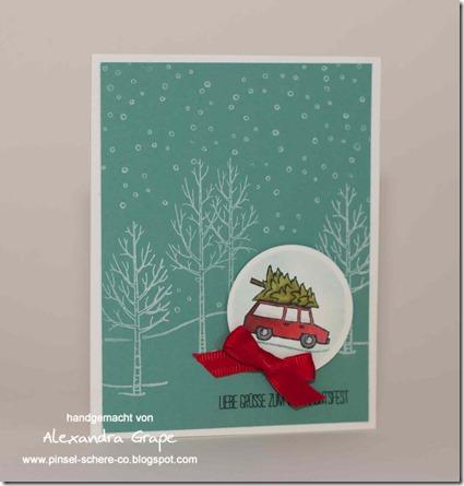 stampin-up_white-christmas_weiße-Weihnacht_weihnachten_lagunenblau_glutrot_alexandra-grape_02