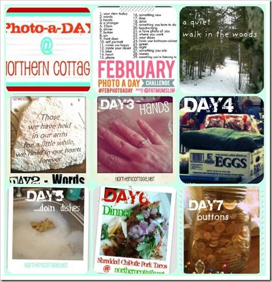 northern cottage feb photo a DAY week 1