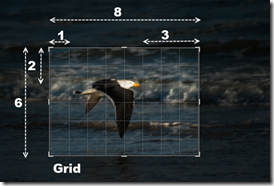 Regular grid cropping overlay in lightroom