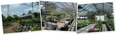 View greenhouse