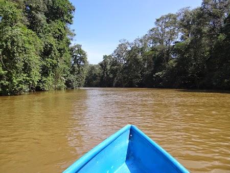 03. Tortuguero, Costa Rica.JPG