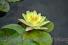 10-Glória Ishizaka - Tokugawaen - Nagoya - Jp