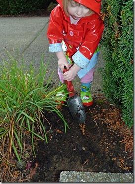 Planting Bulbs 2