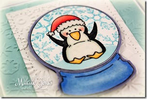 Snow_Globes_and_Ornaments_6-2