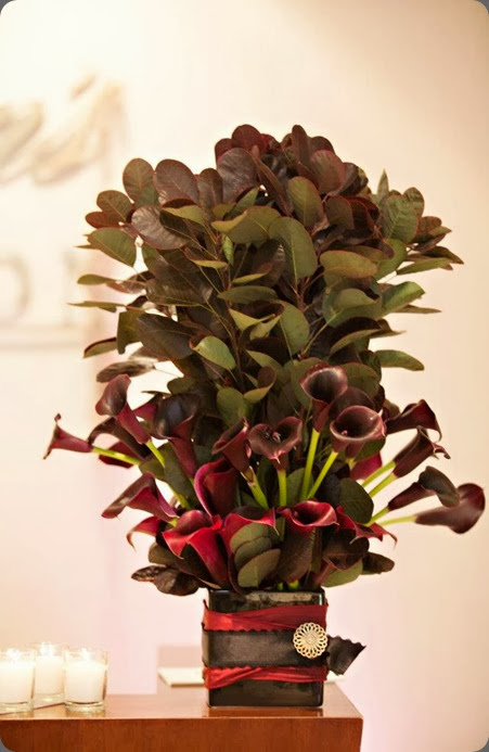 black calla 224409_10151491038823868_661400988_n romance of flowers