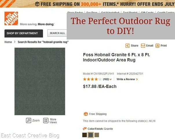Home Depot Rug