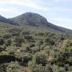 Sierra de Santa Eufemia- GDR Los Pedroches
