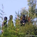 Les polices espagnoles et françaises travaillent ensemble  contre ETA