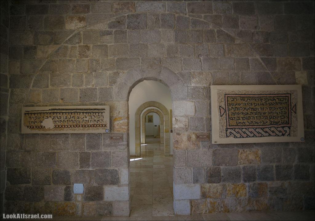 Мозаики от «Доброго самаритянина» (israel  путешествия иудея и самария и интересно и полезно выставки музеи фестивали  20130215 good samaritan mosaic 018 5D3 8392)
